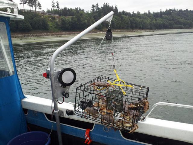 Lobster trap puller lobster house for Craigslist fishing equipment