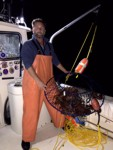 lobster fishing in Southern California
