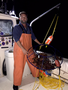 pot pulling lobster in sothern california